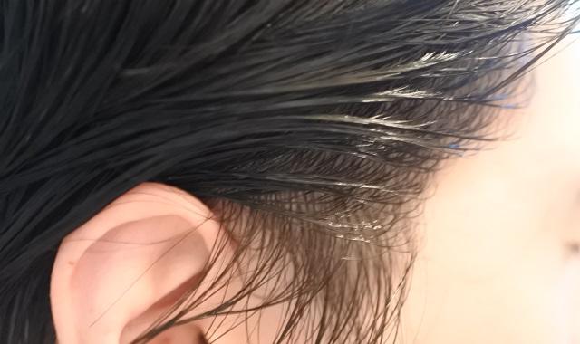 白髪染め 染め状況